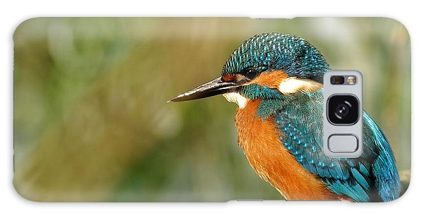 Horizontal Galaxy Case - Poland In June.common Kingfisher In The by Tomasz Kubis