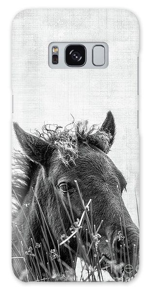 Hiding Galaxy Case - Pony Foal by Delphimages Photo Creations