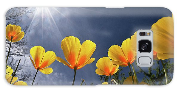 Poppies Enjoy The Sun Galaxy Case