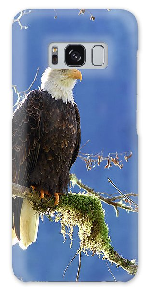 Portrait Of A Backlit Bald Eagle In Squamish Galaxy Case