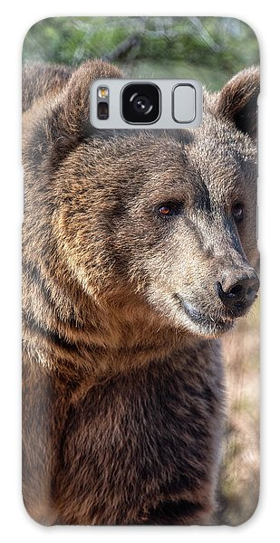 Portrait Of A Female Grizzly Bear Galaxy Case