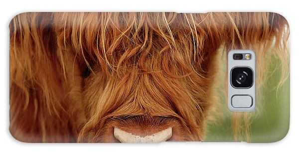 Portrait Of A Highland Cow Galaxy Case