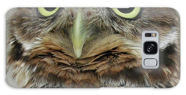 Portrait Of Burrowing Owl Galaxy Case