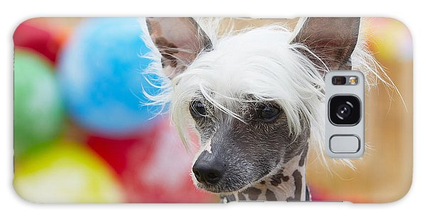 Jewels Galaxy Case - Portrait Of Chinese Crested Dog - Copy by Jaromir Chalabala