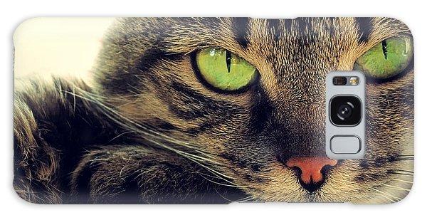 Tabby Galaxy Case - Portrait Of Green-eyed Cat by Artdi101