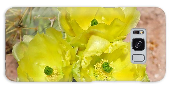 Prickly Pear Cactus Trio Bloom Galaxy Case