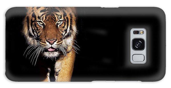 Indian Head Galaxy Case - Prowling Tiger by Luke Wait