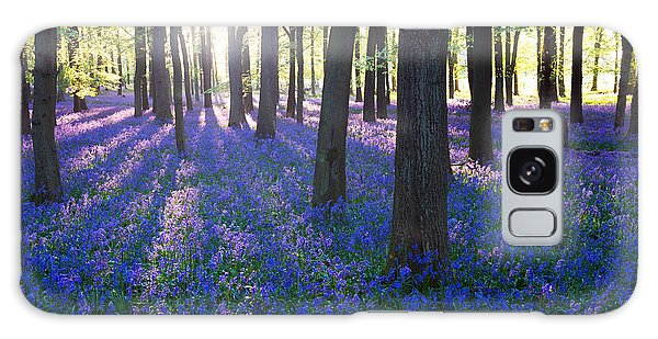 Bluebell Galaxy Case - Purple Bluebell Woods In Early Morning by Stocker1970