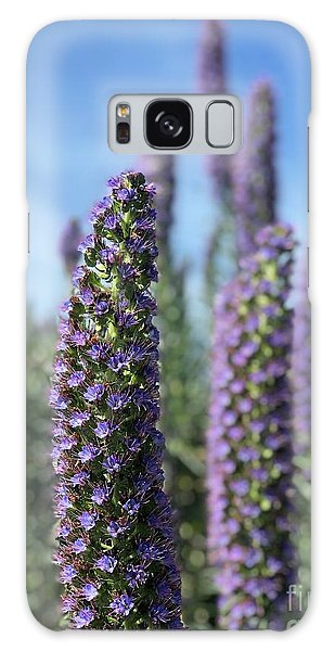 Purple Hyssop  Galaxy Case