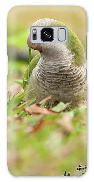Quaker Parrot #3 Galaxy Case