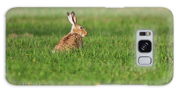 Rabbit Chews Galaxy Case