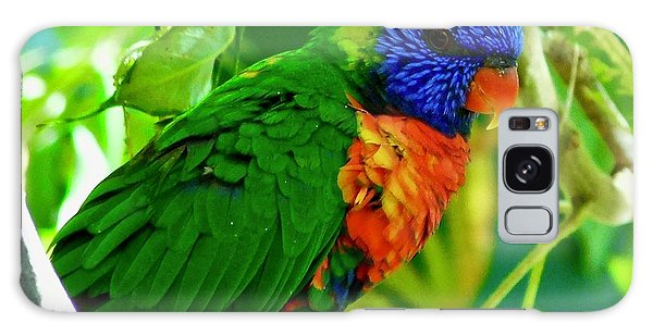 Galaxy Case featuring the photograph Rainbow Lorikeet by Dan Miller