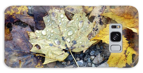 Galaxy Case featuring the photograph Rainy Autumn Day by Mike Murdock