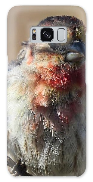Rare Multicolored Male House Finch Galaxy Case