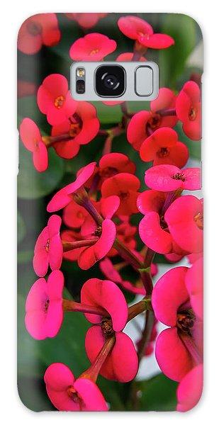 Red Flowers In Bloom Galaxy Case