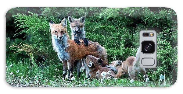Red Fox Family Galaxy Case