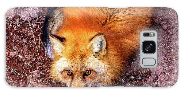 Red Fox In Canyon, Arizona Galaxy Case