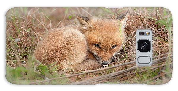 Red Fox Kit - Resting Galaxy Case