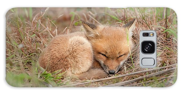Red Fox Kit - Sleeping #1 Galaxy Case