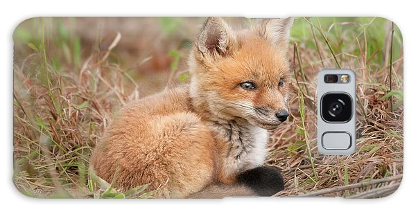 Red Fox Kit - Watchful #1 Galaxy Case