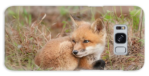 Red Fox Kit - Watchful #2 Galaxy Case