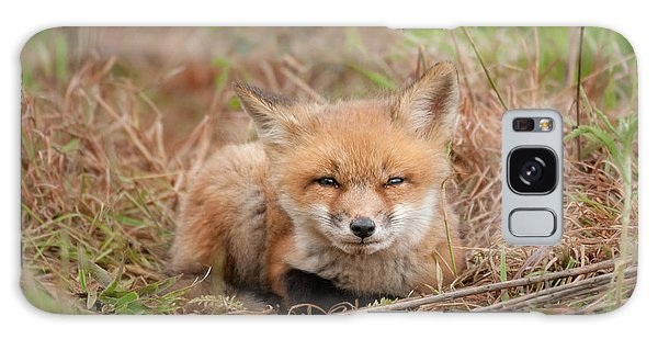 Red Fox Kit - Watching You Galaxy Case