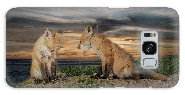 Red Fox Kits - Past Curfew Galaxy Case