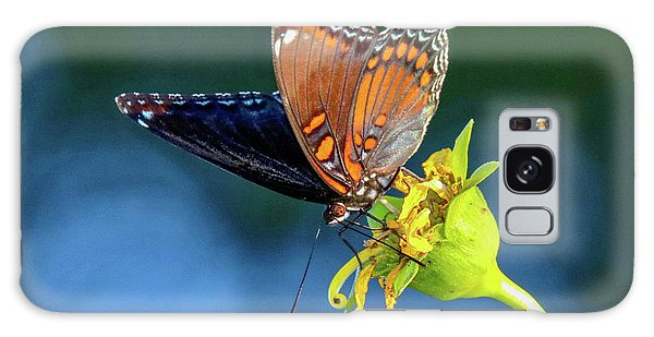 Red-spotted Purple Butterfly Galaxy Case