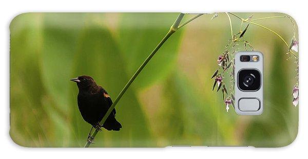 Red-winged Blackbird On Alligator Flag Galaxy Case