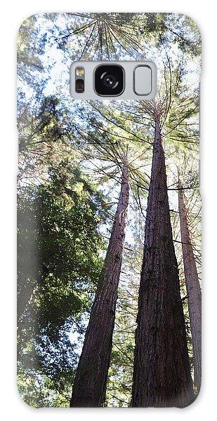 Redwoods, Blue Sky Galaxy Case
