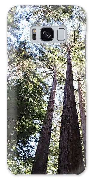 Redwoods, Blue Sky Galaxy Case