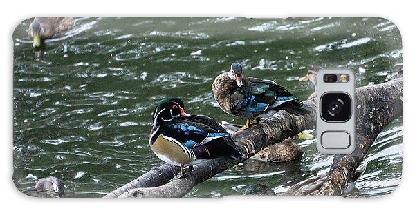 Animals Galaxy Case - Resting Ducks by Rob Olivo