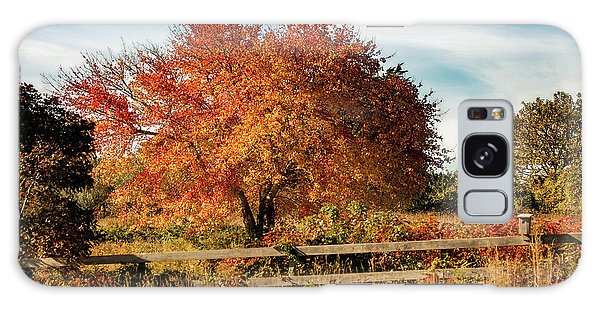Rhode Island Audubon In Fall Colors Galaxy Case