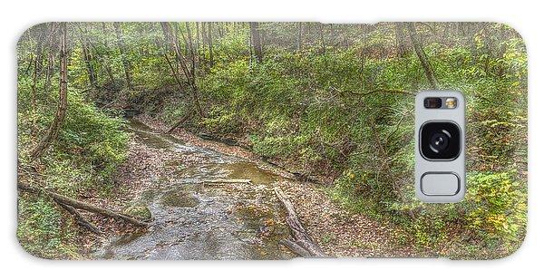 River Flowing Through Pine Quarry Park Galaxy Case