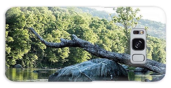 River Tree Galaxy Case