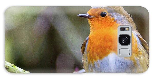 Robin. On Guard Galaxy Case