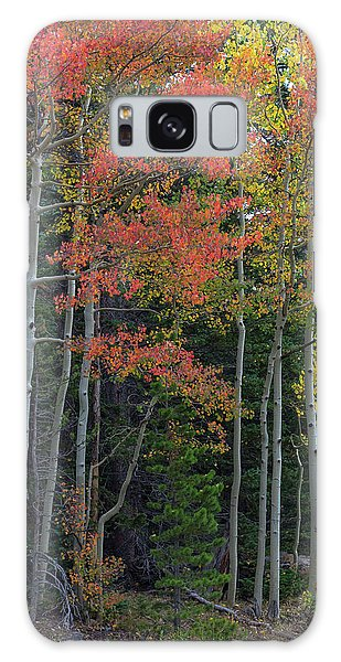 Galaxy Case featuring the photograph Rocky Mountain Forest Reds by James BO Insogna