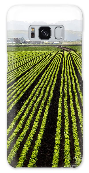 New Leaf Galaxy Case - Rows Of Freshly Planted Lettuce In The by Dwight Smith