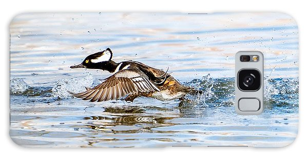 Running Take Off -- Hooded Merganser Galaxy Case