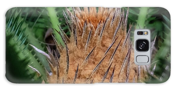 Sago Palm Galaxy Case