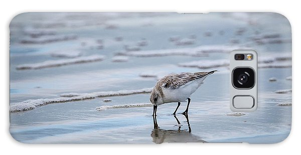 Sanderling Foraging Galaxy Case