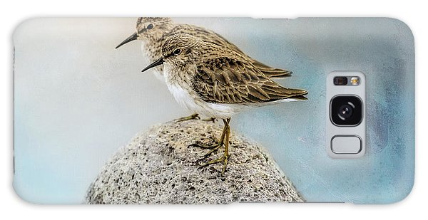 Sandpipers On A Rock Galaxy Case