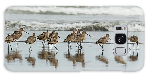 Galaxy Case featuring the photograph Sandpipers Piping by Bob Cournoyer