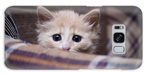 Hiding Galaxy Case - Scared Kitten Hiding At Home by Khamidulin Sergey