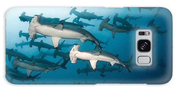 School Galaxy Case - School Of Scalloped Hammerheads by Tomas Kotouc