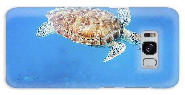 Sea Turtle And Fish Swimming Galaxy Case