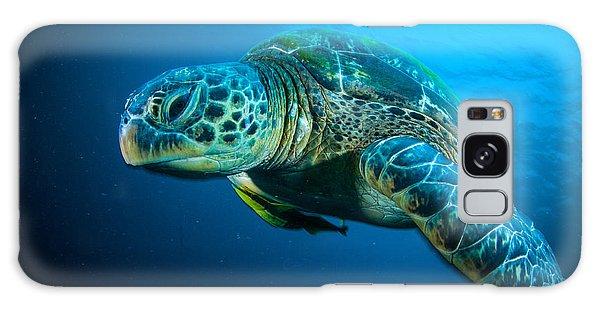 Turtle Galaxy Case - Sea Turtle Swimming Bunaken Sulawesi by Fenkieandreas