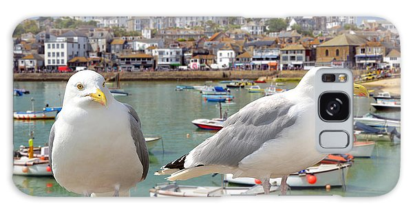 Seagulls Galaxy Case - Seagulls In St Ives Harbour Cornwall by Jaroslava V