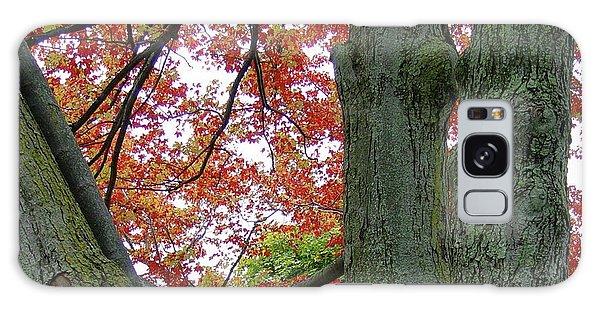 Seeing Autumn Galaxy Case