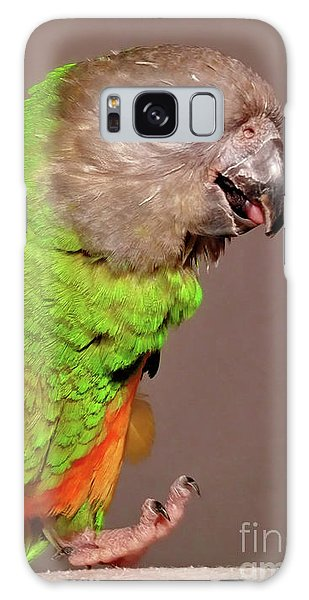 Senegal Parrot Galaxy Case